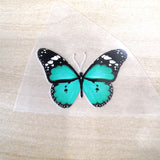 Unique Teal Butterfly Patches For Custom Butterfly Sneaker Teal Butterfly Stickers for Shoes