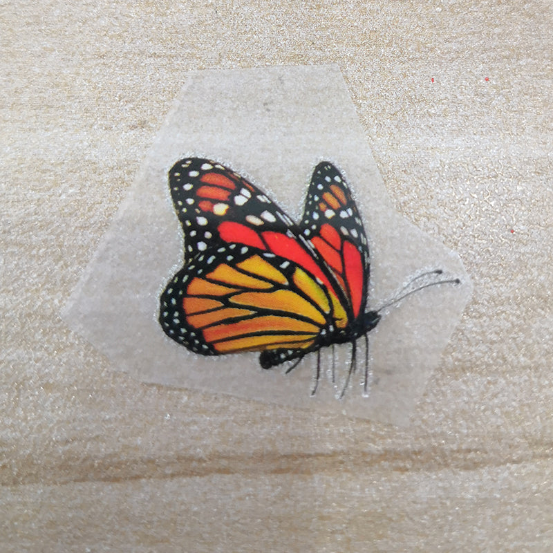 Heat Transfer Monarch Butterfly Patches 3 Designs 7 Butterflies Stickers For DIY Adult or Kid Shoes