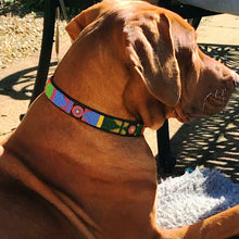 "Load image into Gallery viewer, 18""-20"" Large breed Dog Collar (1"" wide)"