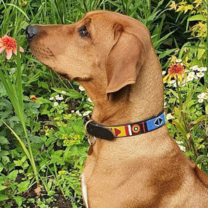"Medium breed Dog Collar<br>Neck size 15""-17"" (38-44cm)  1"" (3cm) wide"