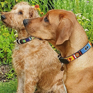 "Small breed Dog Collar<br>Neck size 12""-14"" (30-36cm) 3/4"" (2cm) wide"