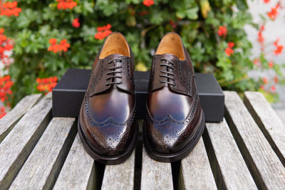 Carlos Santos 6237 Wingtip Brogue in Guimaraes Patina for The Noble Shoe 1