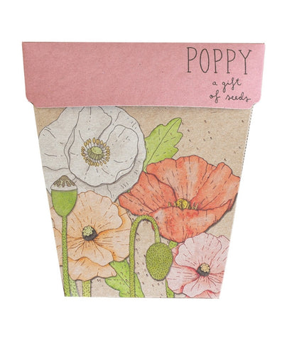 Sow 'n Sow Seeds - Poppy