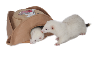 Marshall Pet Pirate Hat Ferret bed