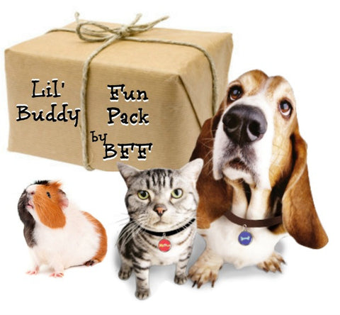 Lil Buddy FunPack For Multi-Pet Families