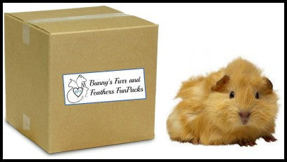 FunPack-Pocket Pet.  Please specify pet type when ordering