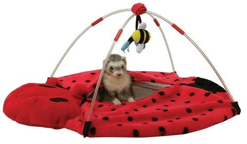 Marshall Pet Bed Bug Play Center