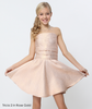 Formal Red Carpet Dress Metallic with Tube Top Skater Skirt Rose Gold
