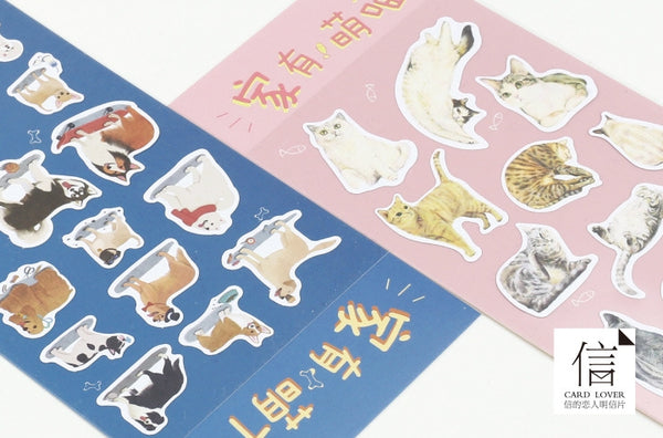 Cats At Home Stickers