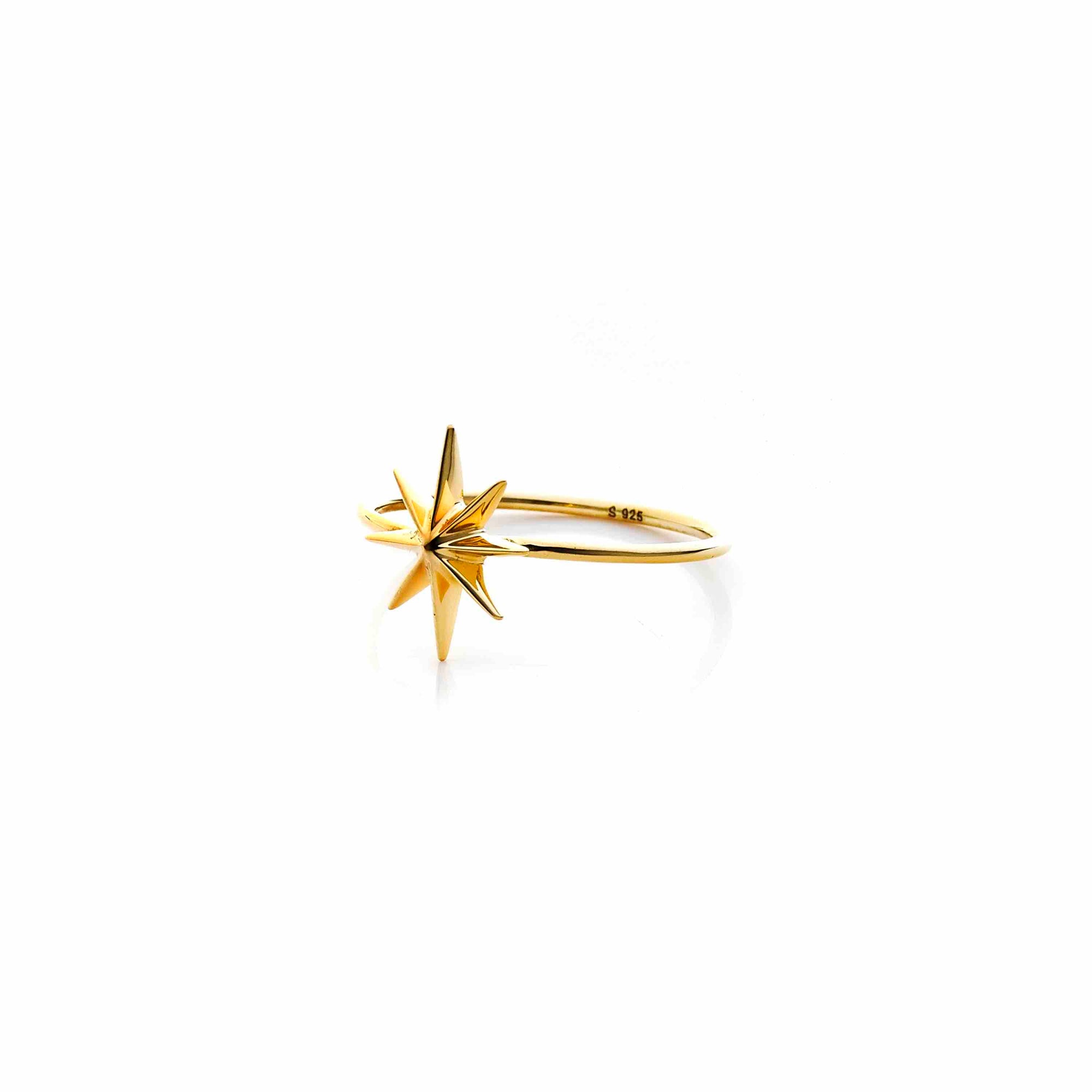 Silk & Steel Jewellery North Star Gold Ring