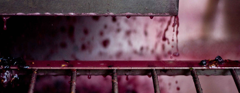 A close-up of bright purple grape juice running down the inside of tank and splashing on to a metal grate below.