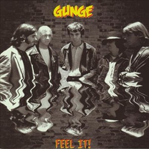 Album Cover of Gunge - Feel it !