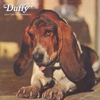 Album Cover of Duffy - Just In Case You're Interested  (Vinyl Reissue)