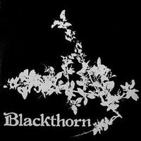 Album Cover of Blackthorn - Blackthorn