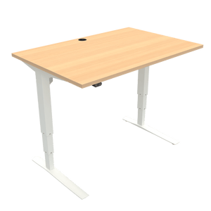 Conset 501-43 Electric Adjustable Desk