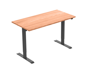 Standwell Electric Height Adjustable Desk