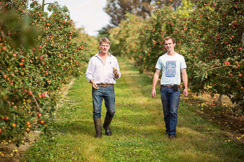 Discover a Local Cider Farm