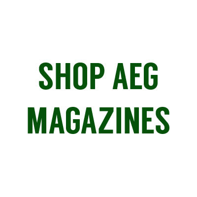 Electric Gun Magazines