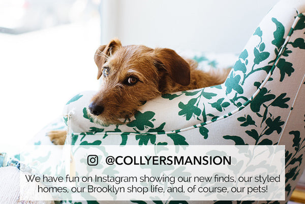 Collyer's Mansion colorful instagram