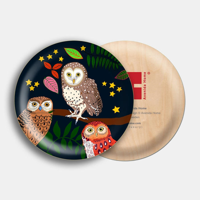 Night Owl Bird Mini Tray