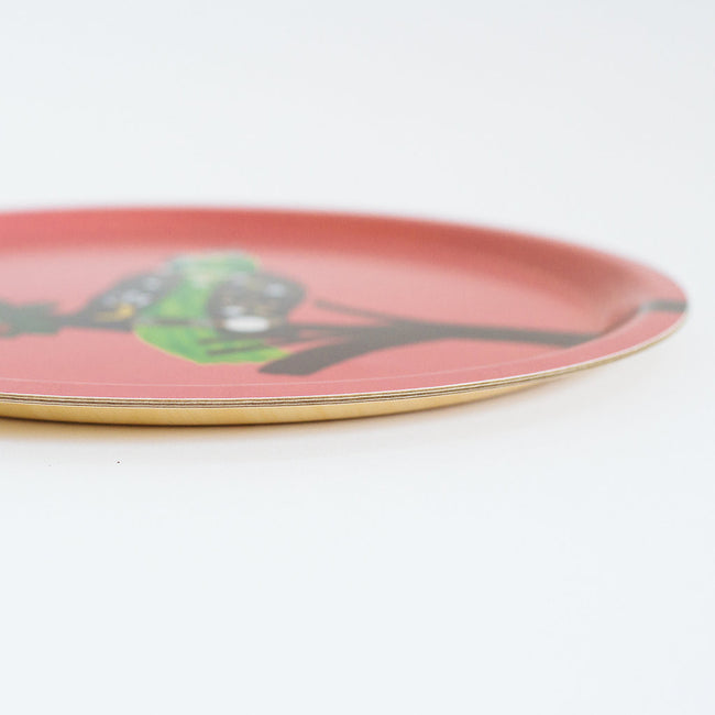 Round designer tray in Scandinavian tray style with a pink background and parrot portrait for dining or home decor - Collyer's Mansion