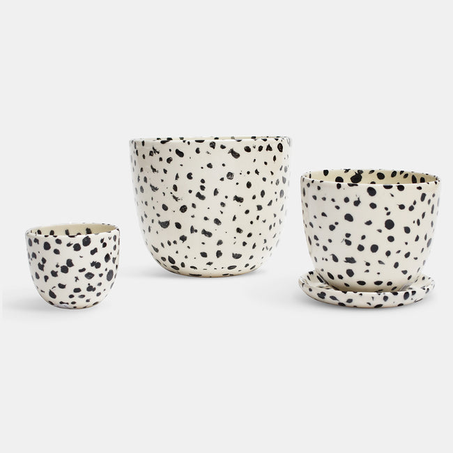 Speckled Planter