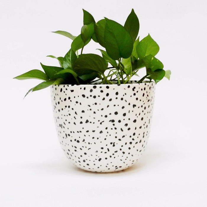 Extra Large Speckled Planter