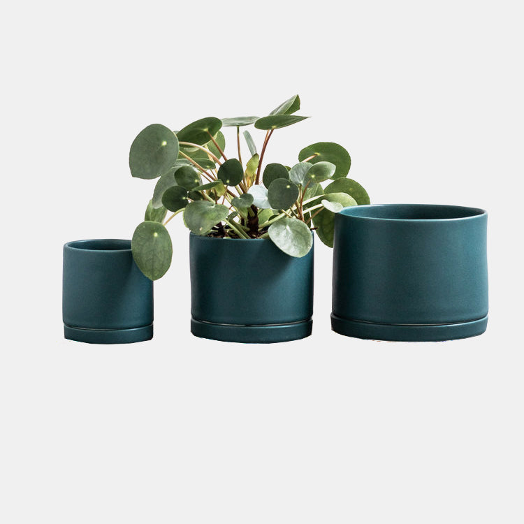 Mariner Green Tabletop Planter