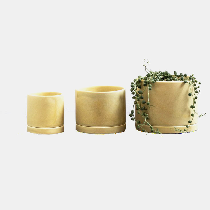 Goldenrod Tabletop Planter