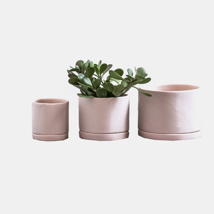 Tabletop Planter Pink