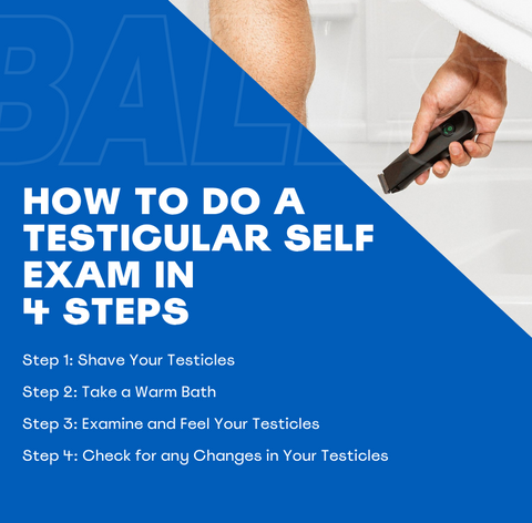How To Do A Testical Exam in 4 Steps