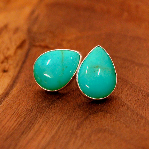 Earrings - Turquoise - Posts