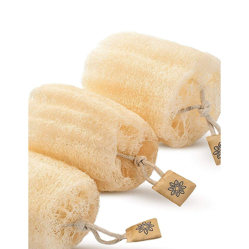 premium natural egyptian loofah