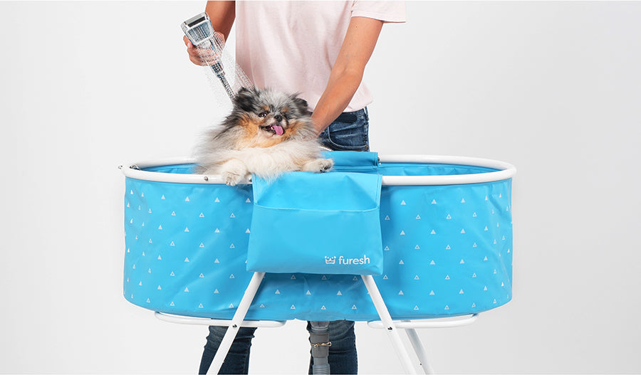 Wash your dog with Furesh bathtub