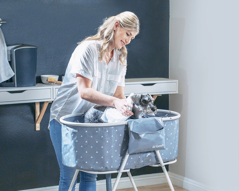 A woman washing a mini schnauzer indoor with Furesh dog bathtub
