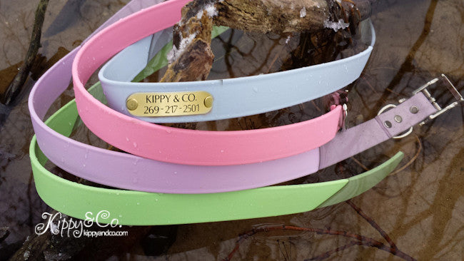 Waterproof Dog Collar in Pastel Colors With Engraved Name Plate