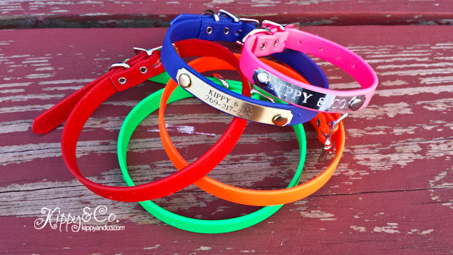 Waterproof 1/2 inch Dog Collar