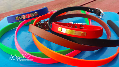 Waterproof 3/4 inch Dog Collar