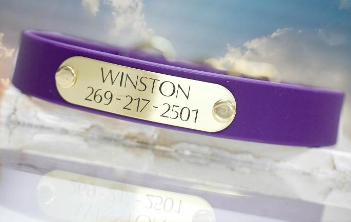 Purple Waterproof Collar with Personalized Name Plate