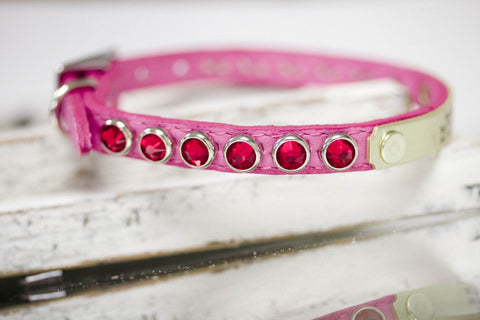 Swarovski Crystal Collar