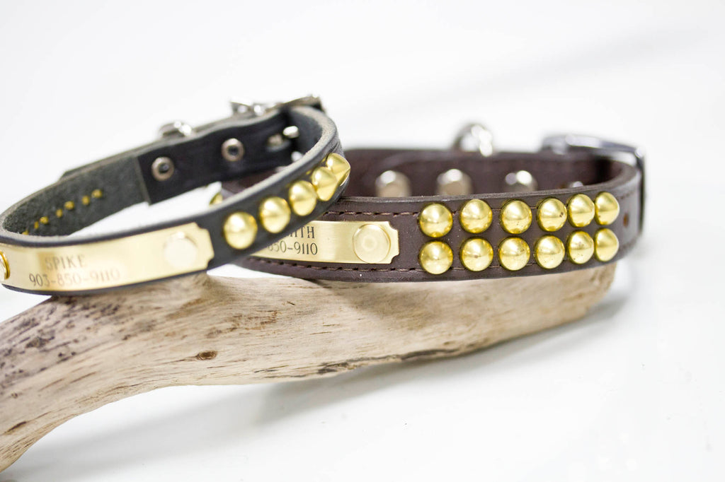 3/4 inch wide leather collar with brass cone studs and personalized name plate