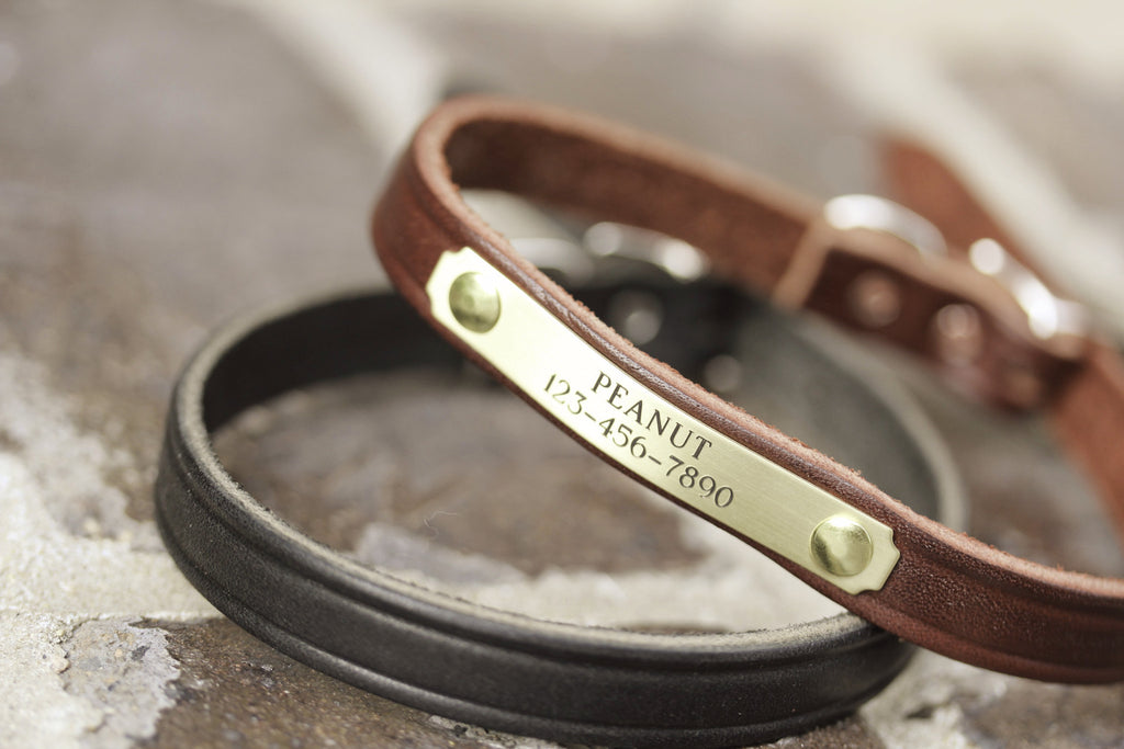 1/2 inch leather dog collar with name plate