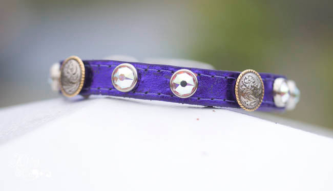 tiny leather collar with berry swirl conchos and  AB Swarovski Crystals