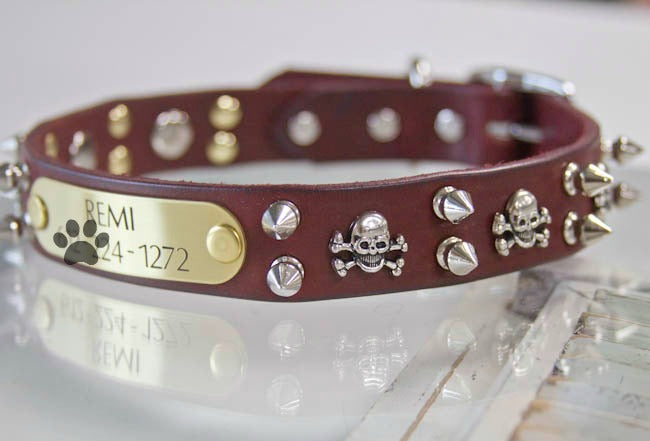 Skull and Spike Leather Collar with Personalized Name Plate