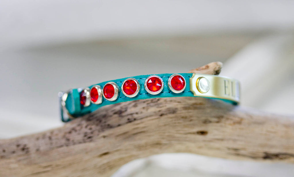 Small lether Collar with Red Siam Crystals and personalized name plate