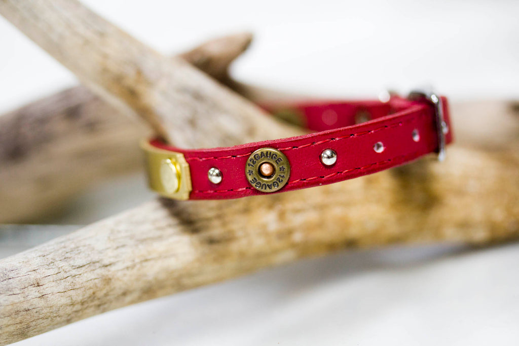 Tiny Leather Collar with 12 gauge concho and nickel spots and a personalized name plate
