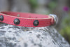 Salmon Leather Dog Collar With Antique Brass Cone Studs