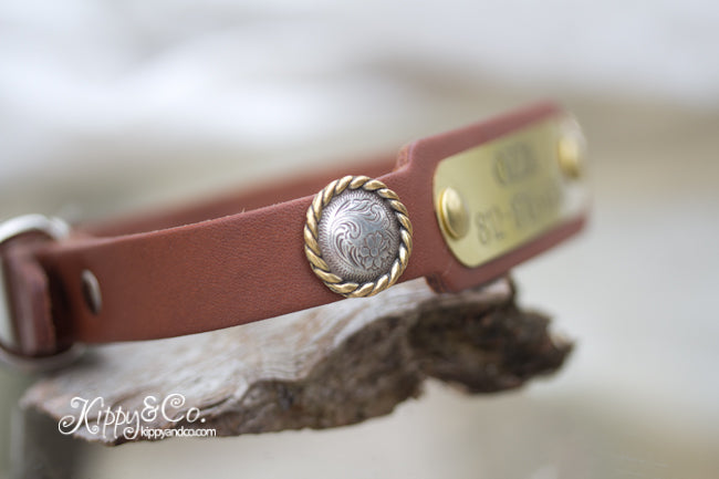 Leather Collar with Swirl Conchos and a name plate