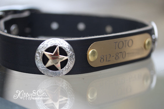 Texas Star Leather Dog Collar With Engraved Brass Name Plate