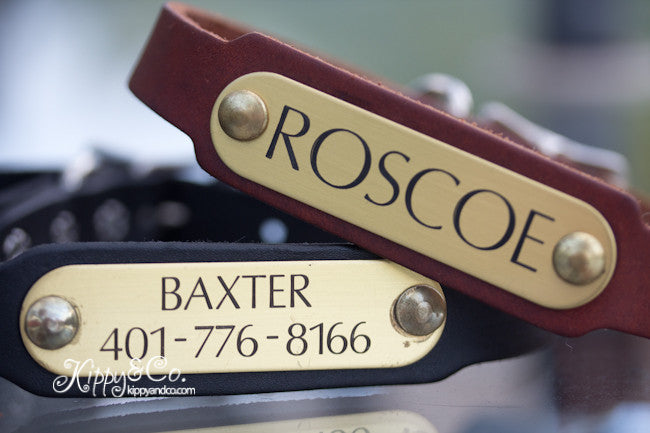 Personalized Leather Dog Collar With a Brass or Silver Name Plate